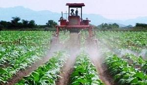 DGA destinará 30 millones de euros hasta 2.017 a la modernización agraria